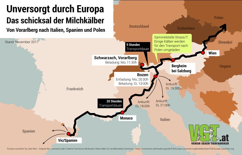 Transportroute österreichischer Kälber