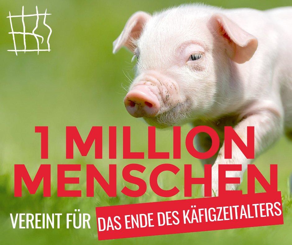 Eine Million EU-Bürger_innen für ein Ende der Käfighaltung